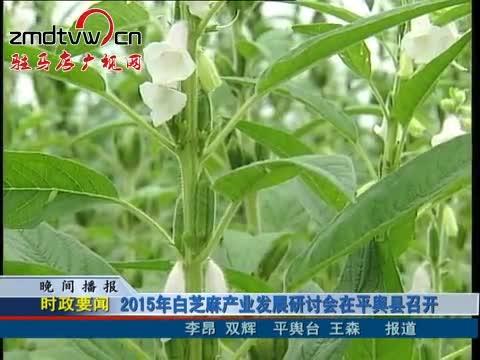 2015年白芝麻产业发展研讨会在平舆县召开
