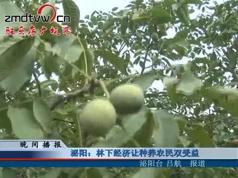 泌阳:林下经济让种养农民双受益
