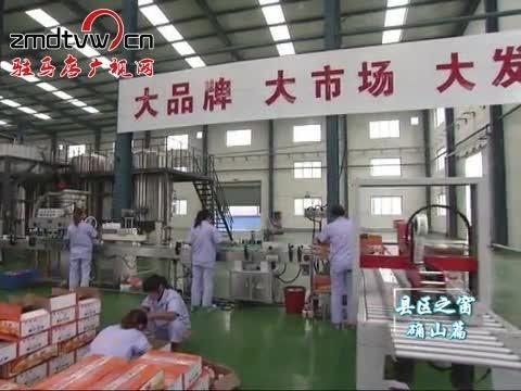 确山:推进产业集聚区建设 增强经济发展后劲