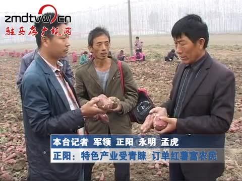 正阳:特色产业受青睐 订单红薯富农民