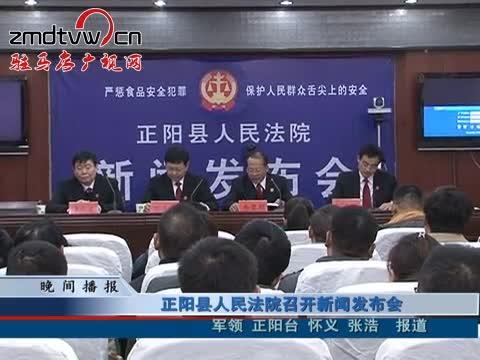 正阳县人民法院召开新闻发布会