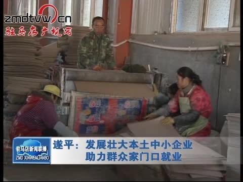 遂平:发展壮大本土中小企业 助力群众家门口就业