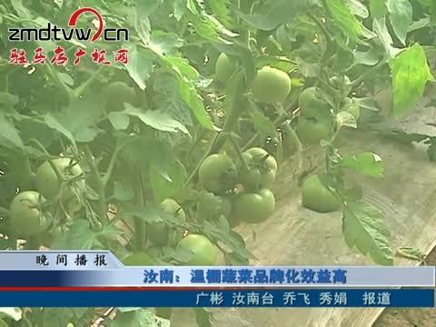 汝南:温棚蔬菜品牌化效益高