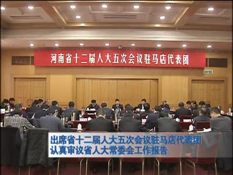 出席省十二届人大五次会议驻马店代表团认真审议省人大常委会工作报告
