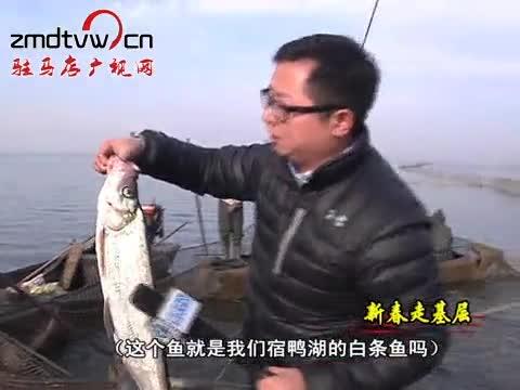 宿鸭湖:鱼把头的捕鱼季