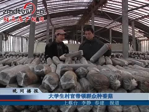 大学生村官带领群众种香菇