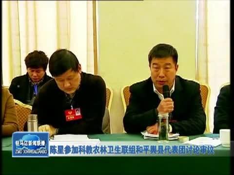 陈星参加科教农林卫生联组和平舆县代表团讨论审议