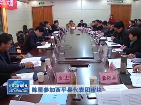 陈星参加西平县代表团审议