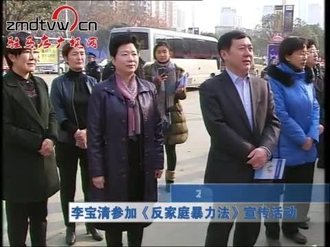 李宝清参加《反家庭暴力法》宣传活动