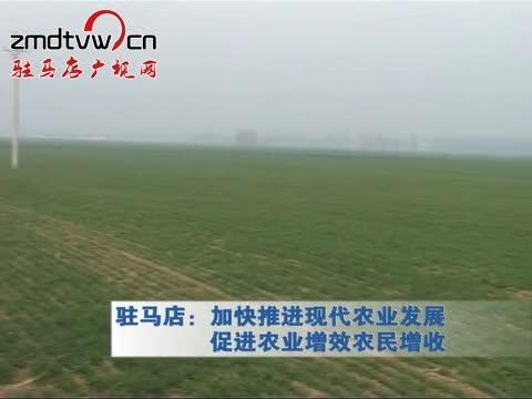驻马店:加快推进现代农业发展促进农业增效农民增收