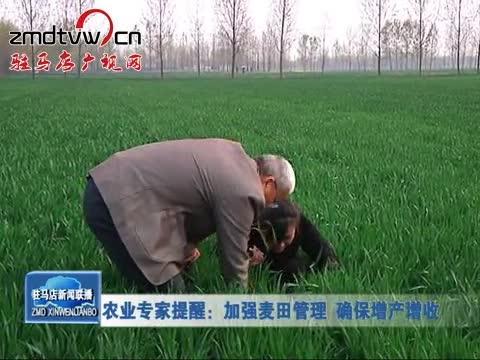 农业专家提醒:加强麦田管理 确保增产增收