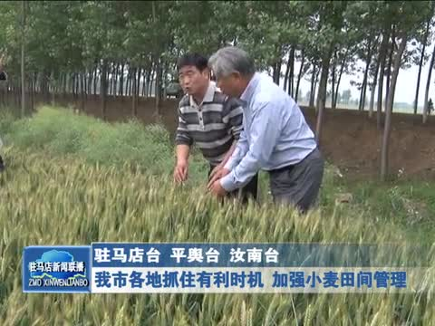 我市各地抓住有利时机 加强小麦田间管理