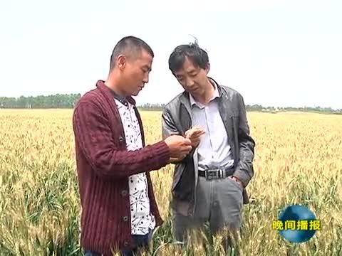 农业专家指导农民科学测土配方施肥