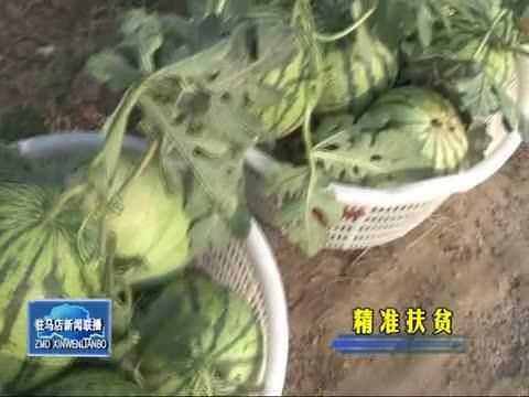 汝南:发展特色农业 促进脱贫增收