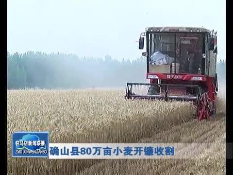 确山县80万亩小麦开镰收割