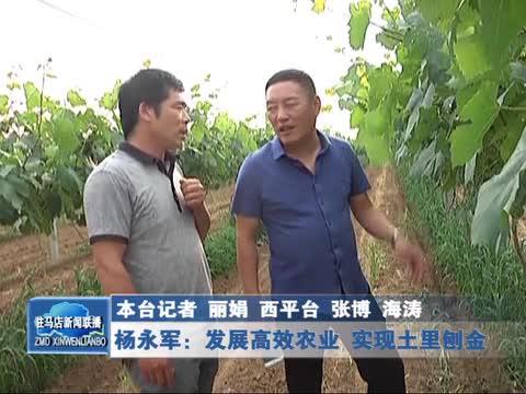杨永军:发展高效农业 实现土里刨金