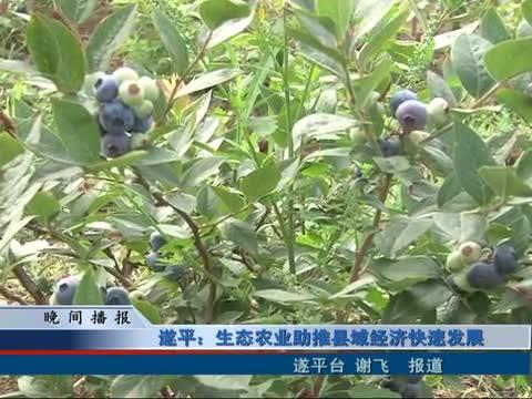 遂平:生态农业助推县域经济快速发展