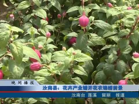 汝南县:花卉产业铺开花农锦绣前景