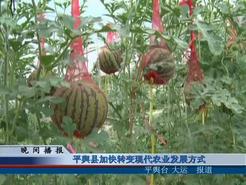 平舆县加快转变现代农业发展方式