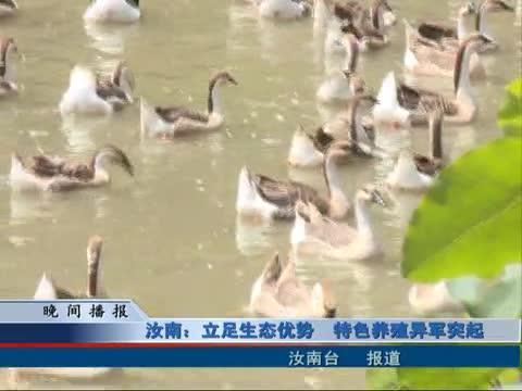 汝南:立足生态优势 特色养殖异军突起
