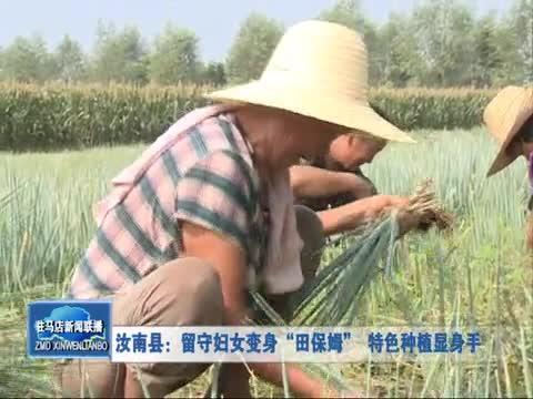 汝南县:留守妇女变身田保姆特色种植显身手