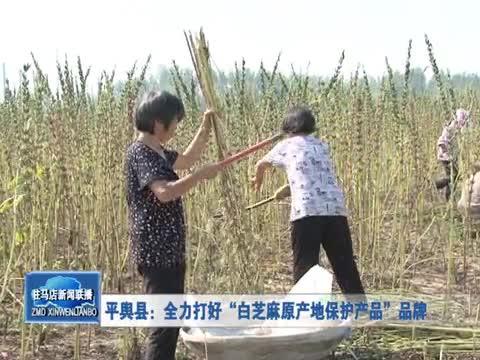 """平舆县:全力打好""""白芝麻产地保护产品""""品牌"""