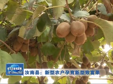 汝南县:新型农户孕育新型致富果