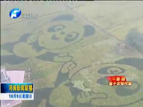 驻马店:扬长补短 打造农业发展新优势