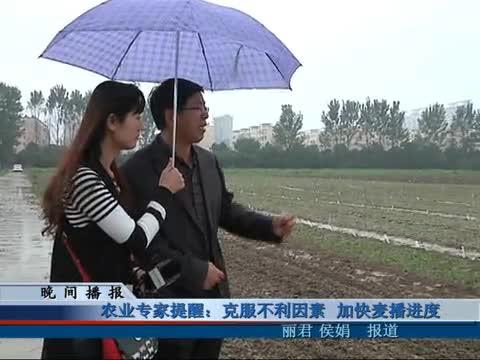 农业专家提醒:克服不利因素 加快麦播进度