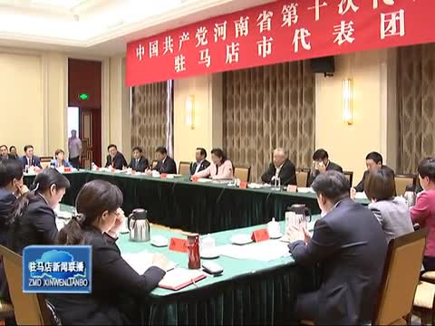 驻马店市代表团举行全体会议审议省委工作报告