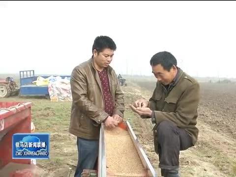 正阳县趁天抢时播种小麦