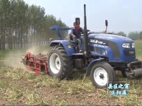 正阳:农业供给侧改革融合花生大产业