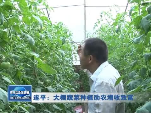 遂平:大棚蔬菜种植助农增收致富