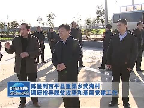 陈星到西平县重渠乡武海村调研指导脱贫攻坚和基层党建工作