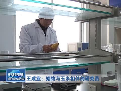 王成业:始终与玉米相伴的研究员