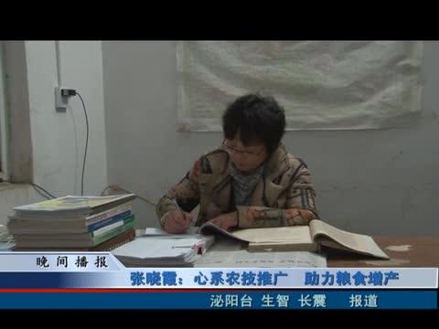 张晓霞:心系农技推广 助力粮食增产