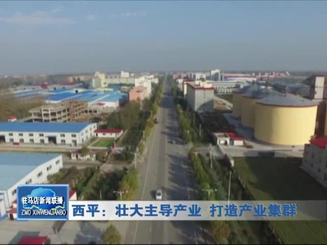 西平:壮大主导产业 打造产业集群