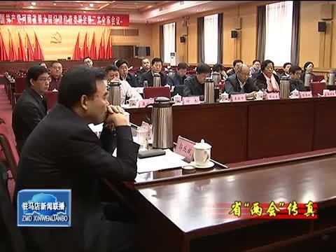 出席省十二届人大七次会议的驻马店代表团成立