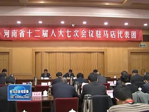 驻马店代表团继续审议省政府工作报告