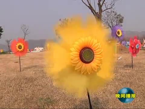 嵖岈山温泉小镇举办我市首届大型风车节