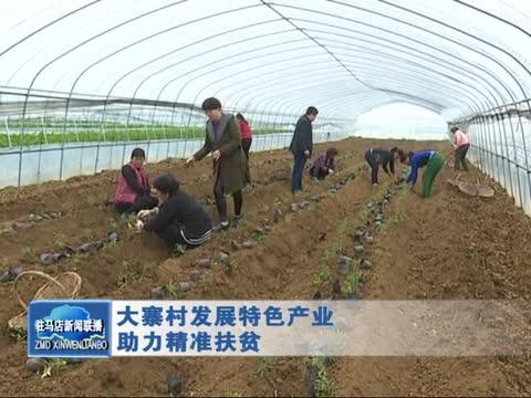 大寨村发展特色产业 助力精准扶贫