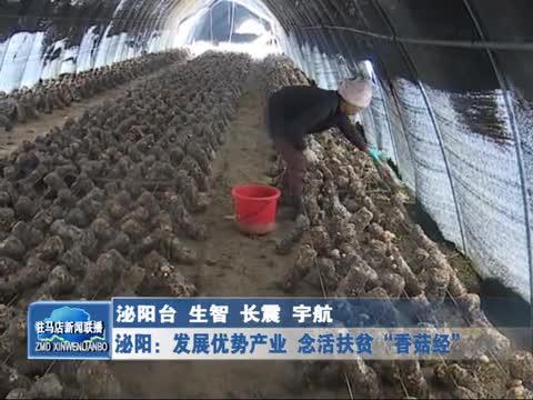 """泌阳:发展优势产业 念活扶贫""""香菇经"""""""