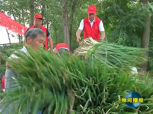 正阳喻廖村:党员志愿者帮助销售滞销大葱