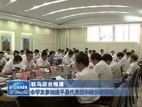 余学友参加遂平县代表团和政协联组审议讨论