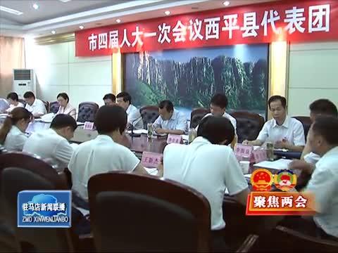 陈星参加西平县代表团和政协联组审议讨论