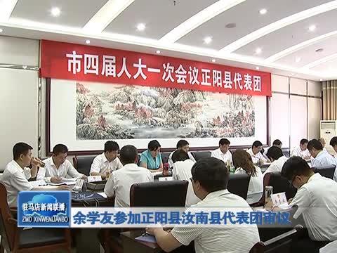 余学友参加正阳县汝南县代表团审议