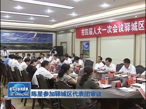 陈星参加驿城区代表团审议