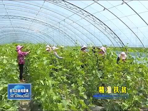 正阳:强化党建引领 产业助推脱贫攻坚
