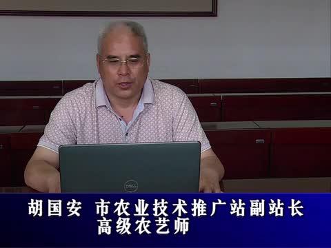 驻马店市推荐全省第二批青年理论宣讲专家胡国安