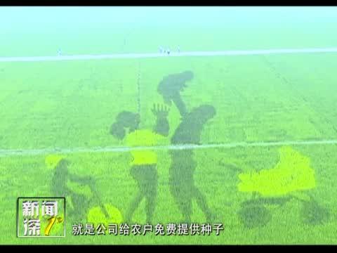 新闻深1°《确山县留庄镇:生态观光特色农业走出致富新路子》
